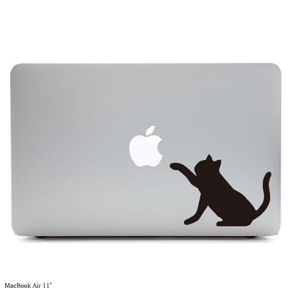 blackcat2